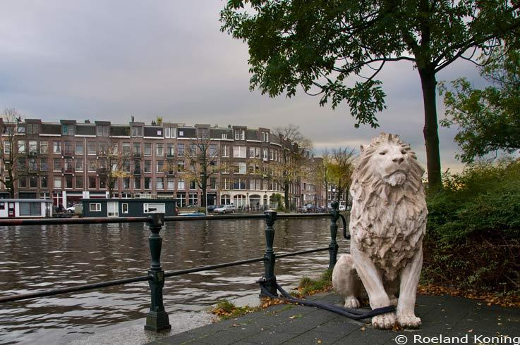 valse leeuw Amsterdam Baarsjesweg (tipgever Roeland Koning 30 10 2012)