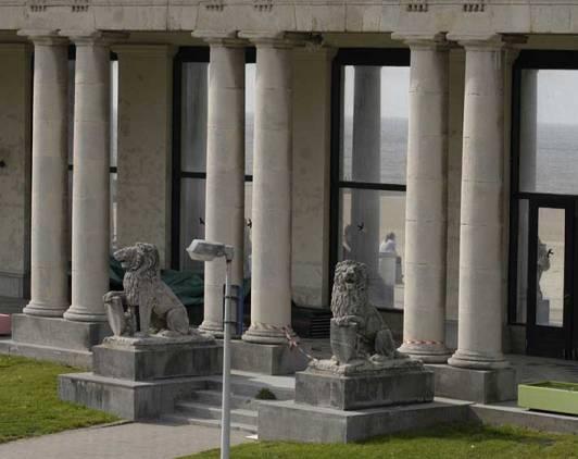 valse leeuw Oostende (foto Willem Bos) voor web